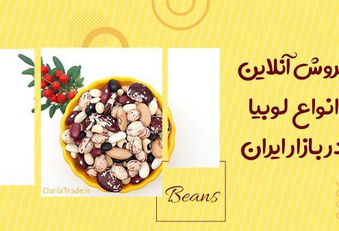 فروش آنلاین انواع لوبیا