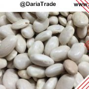 فروش انواع لوبیا سفید