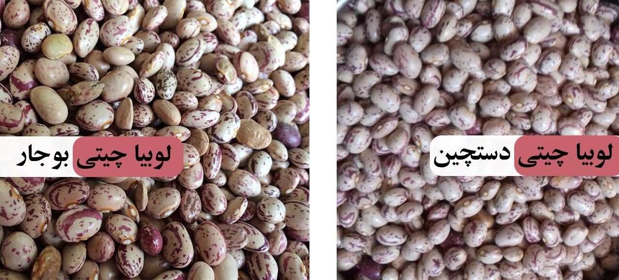 قطب فروش لوبیا چیتی