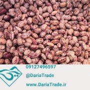 فروش لوبیا چیتی اقلید