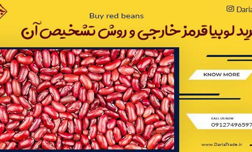 فروش لوبیا قرمز خارجی