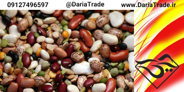 تولید انواع حبوبات مرغوب ایرانی