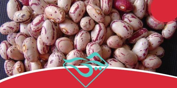 قیمت خرید لوبیا چیتی در سال ۹۷