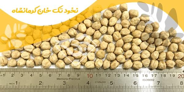 نخود تک خان کرمانشاه
