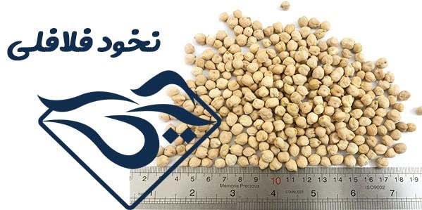 نخود فلافلی کرمانشاه