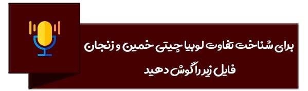 تفاوت لوبیاچیتی خمین و زنجان